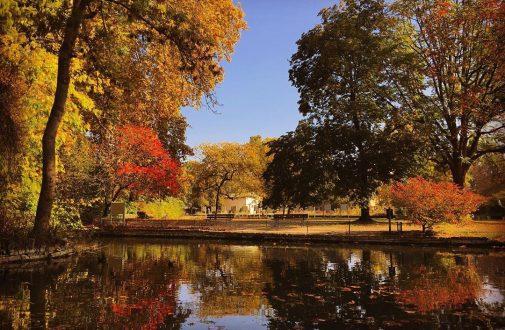 Octobre à Dijon et ses environs