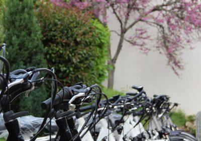 Burgundy Bike - 0