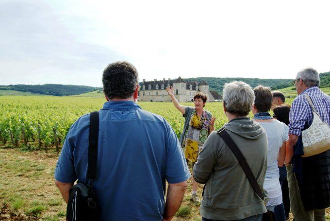 Clos de bourgogne, ateliers découverte «vigne et vin» - 2