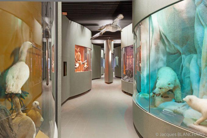Jardin des sciences & Biodiversité – Museum - 0
