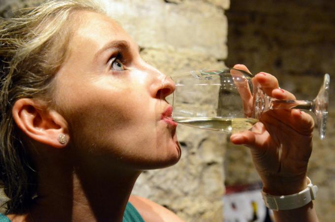 Dijon–Terre-des-vins-de-Bourgogne