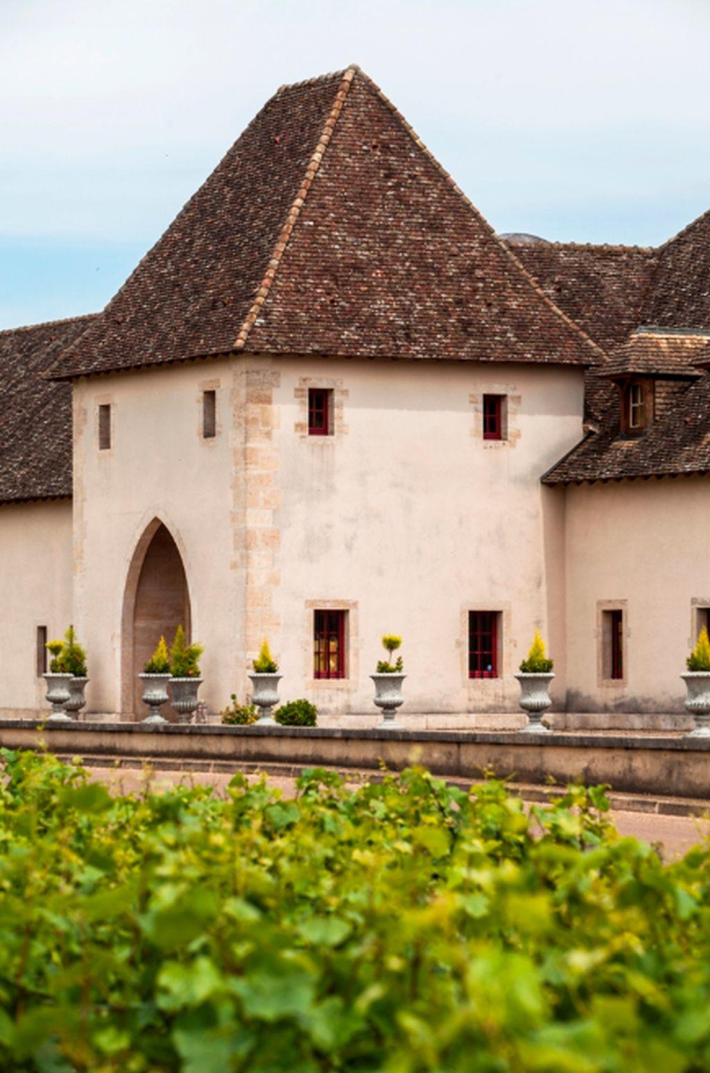 Degustation-Chateau-de-Marsannay