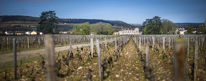 Dégustation Grands Terroirs au Château de Meursault - 3
