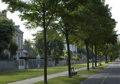 Cours du Parc