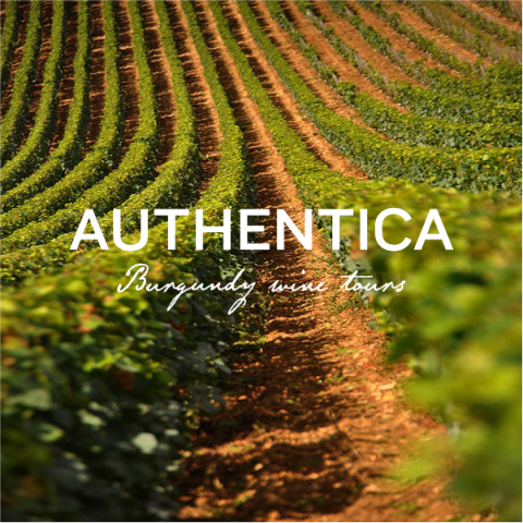 Authentica Tours - 0