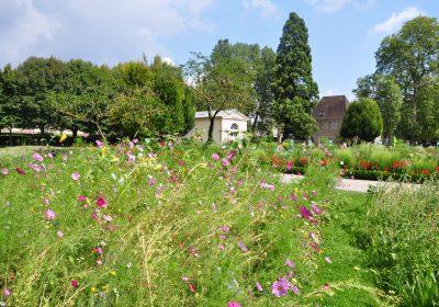 Jardin des sciences & Biodiversité – Jardin botanique - 1