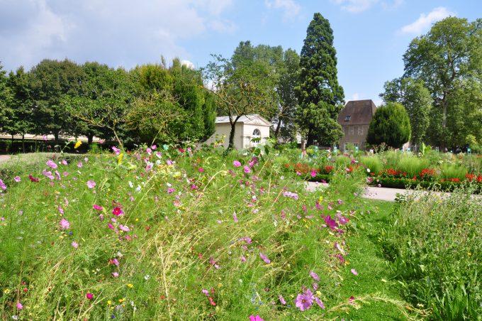 Jardin des Sciences – Jardin botanique - 1