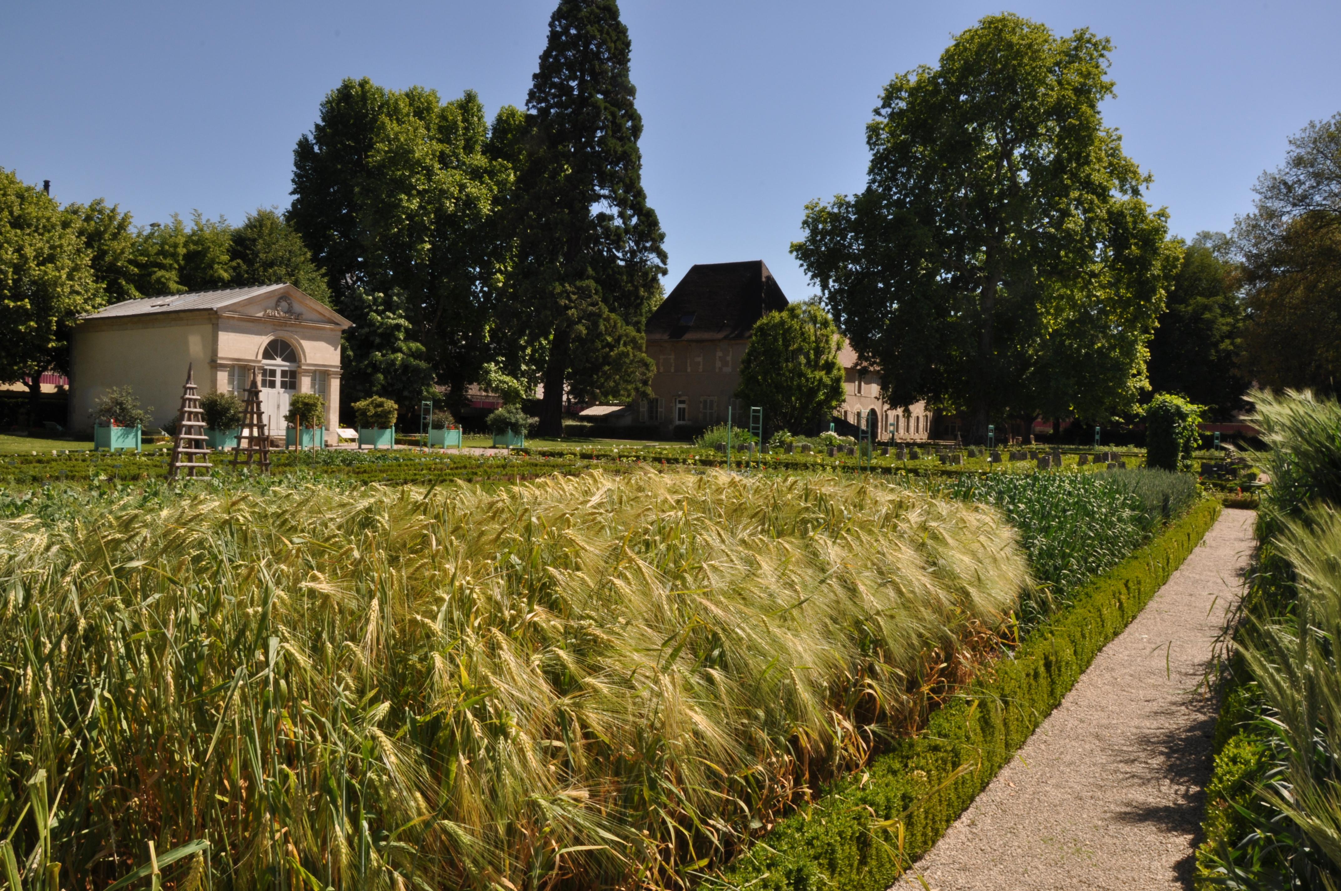 Jardin des Sciences - Jardin botanique à DIJON - Tourisme ...