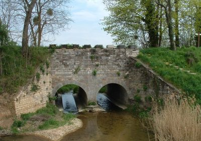 Balades naturalistes gratuites sur la nappe de Dijon Sud  et de la Cent Fonts (Fénay-Saulon-la-Rue,  Saulon-la-Chapelle, Noiron-Sous-Gevrey) – ENS2020 - 4