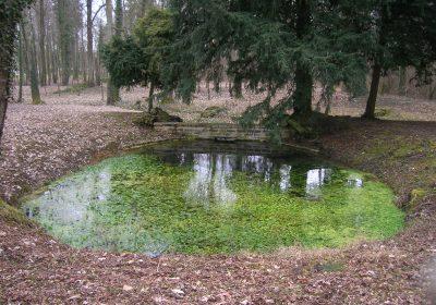 Balades naturalistes gratuites sur la nappe de Dijon Sud  et de la Cent Fonts (Fénay-Saulon-la-Rue,  Saulon-la-Chapelle, Noiron-Sous-Gevrey) – ENS2020 - 3