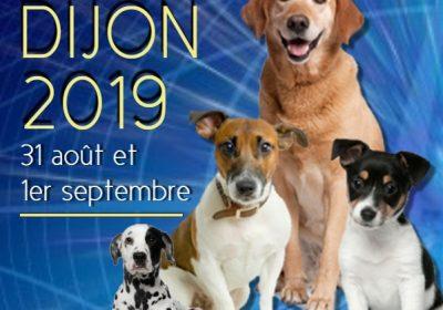 Exposition Canine Nationale et Internationale