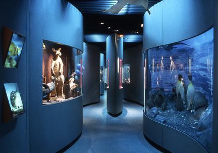 Jardin des sciences & Biodiversité – Museum - 7