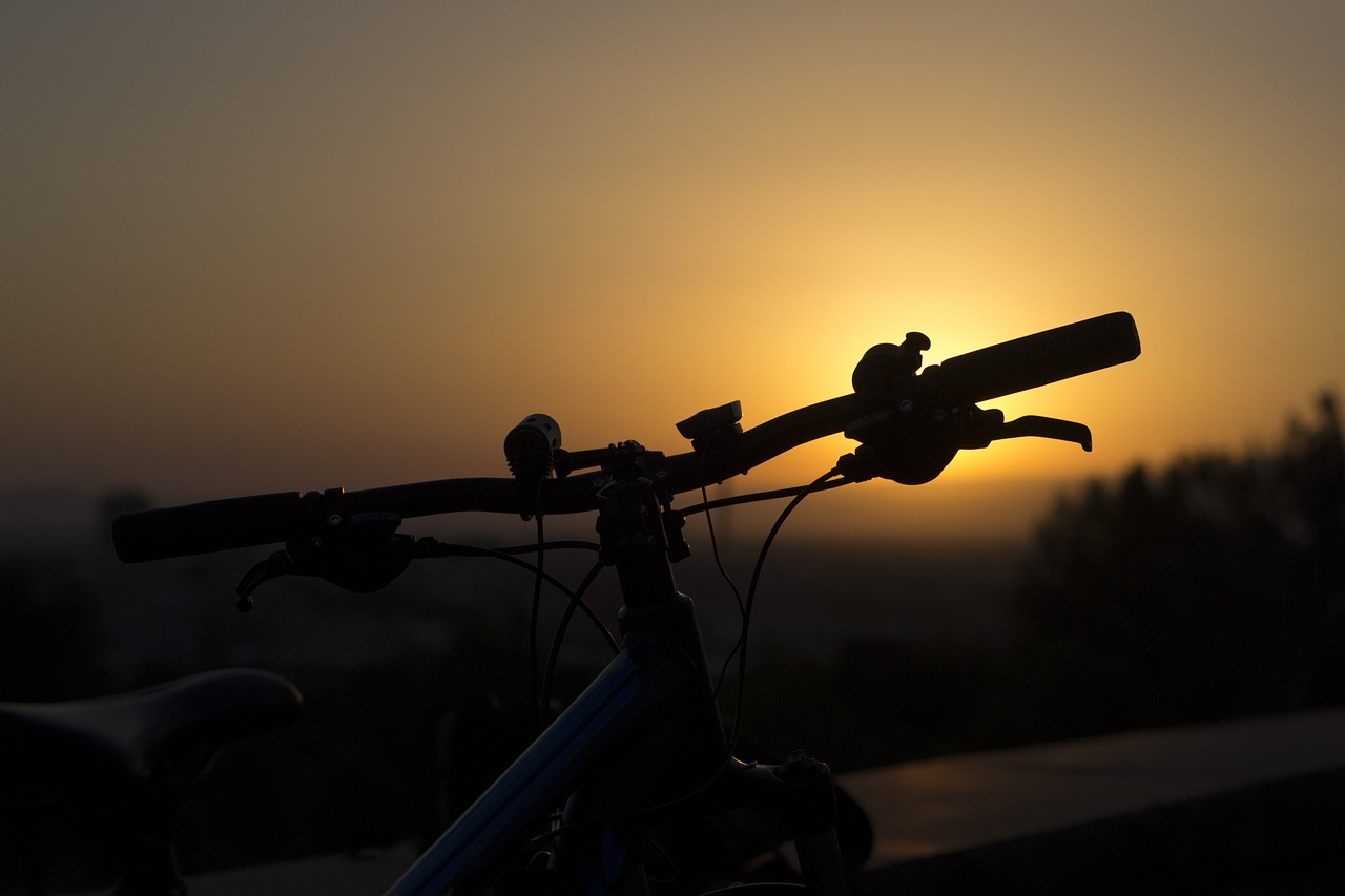 Burgundy Bike - 1