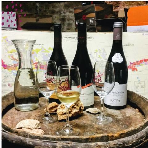 Clos de bourgogne, ateliers découverte «vigne et vin» - 9
