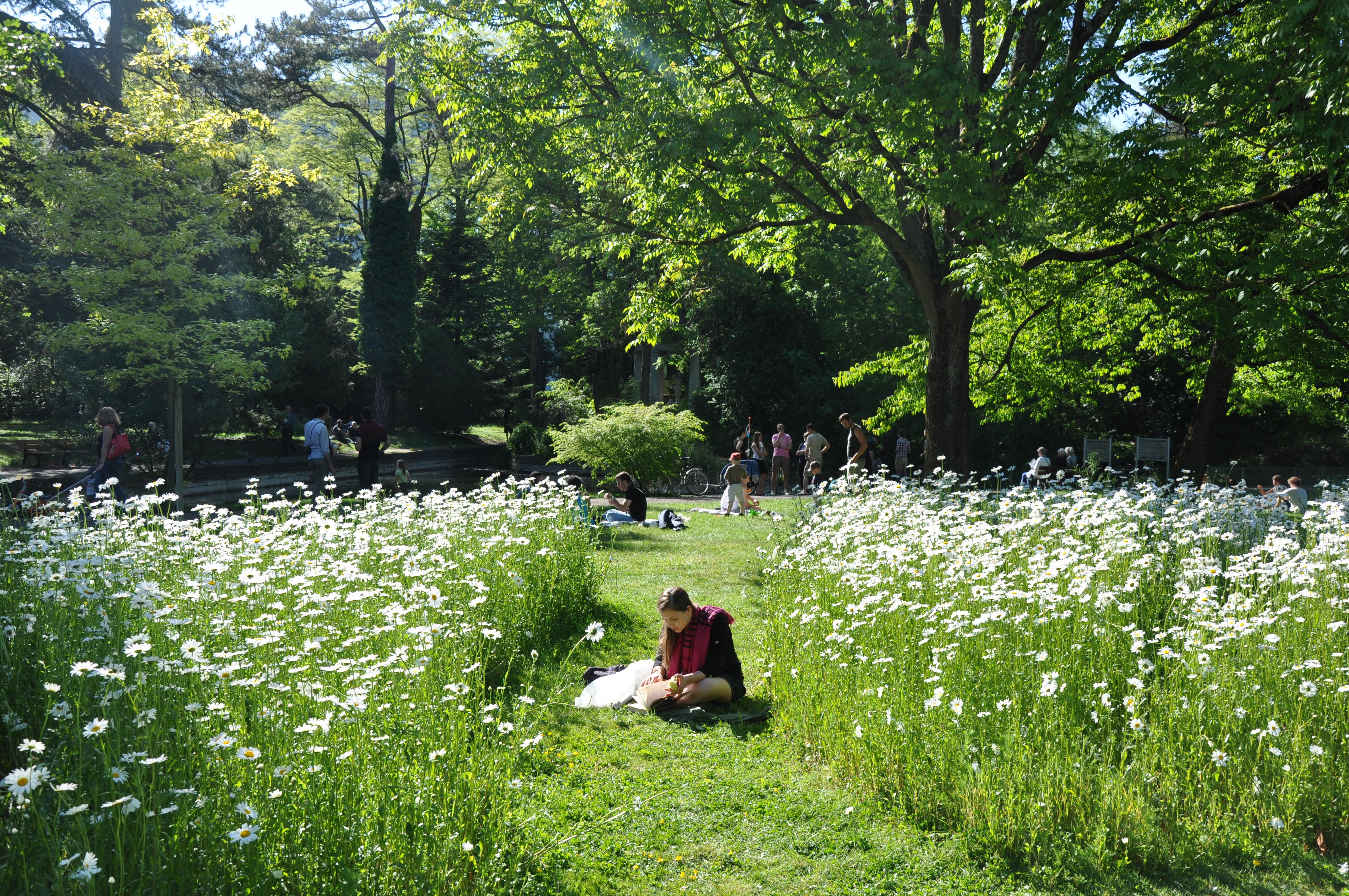 Jardin Des Sciences Jardin Botanique A Dijon Tourisme Dijon Metropole