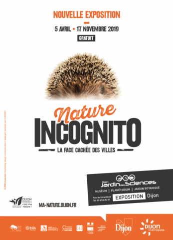 nature-incognito