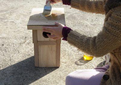 ENS2021 – Visite entretien des nichoirs du Bois du ru de Pouilly