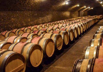 Château Vélo Vino en Côte de Nuits - 1